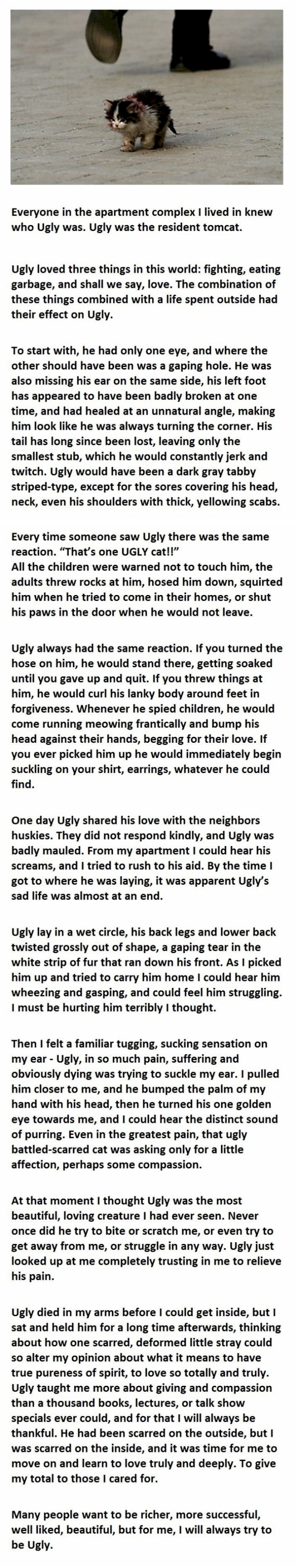 ugly-story